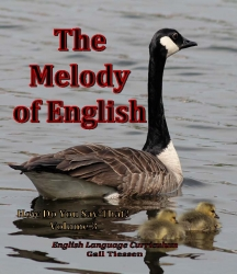 The Melody of English - How Do You Say That Volume 3 USB