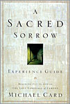 Sacred Sorrow - Experience Guide